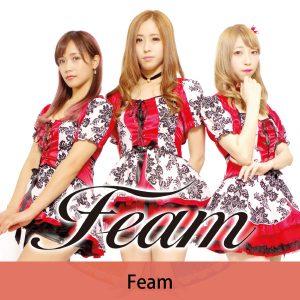 33_feam