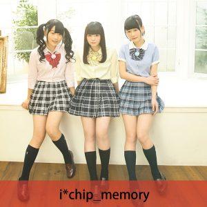 81_ichip_memory